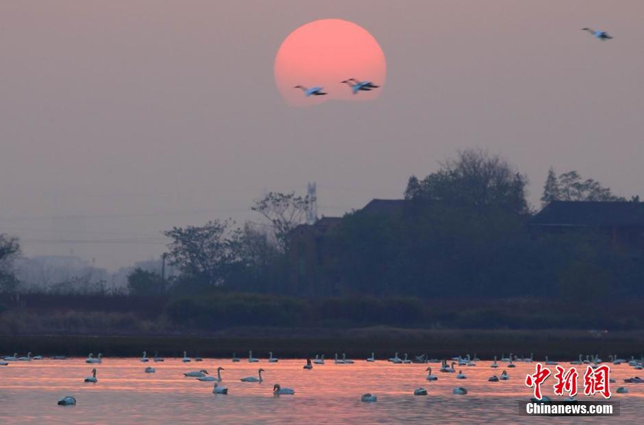Озеро Поянху