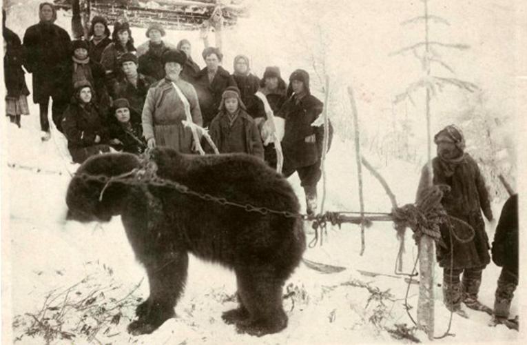 На медвежьем празднике айнов