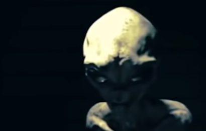 Видео допроса пришельца из будущего