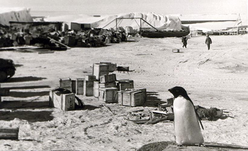 Антарктическая станция Мирный