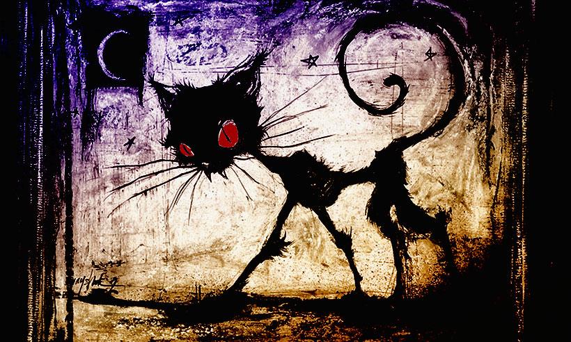 Охота на Черную кошку