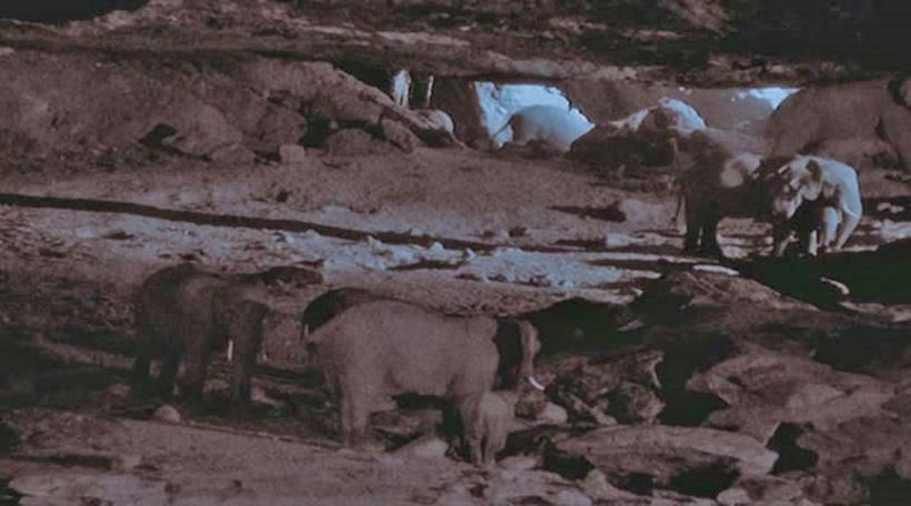 Пещера Китум