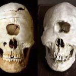 Необычные черепа как свидетельства странных существ