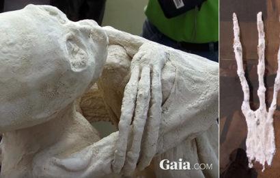 Трёхпалая мумия пришельца найдена в Перу