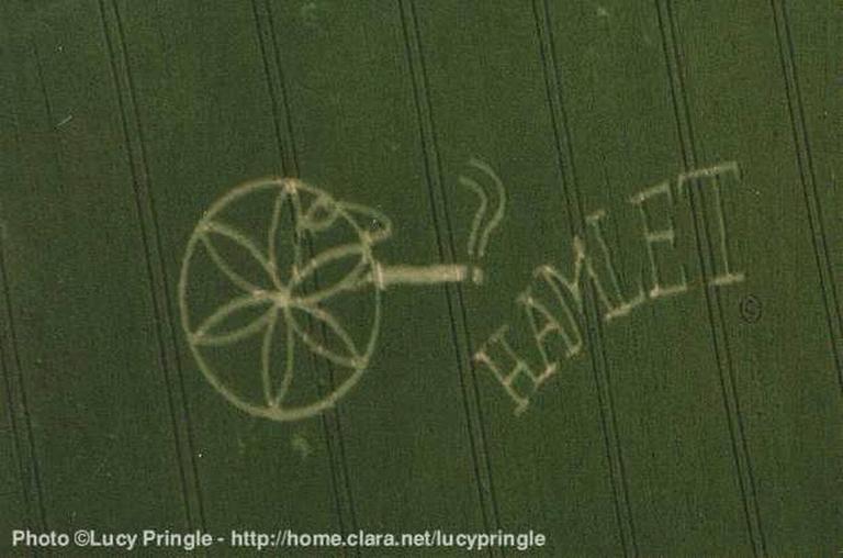 Круги на полях - человек