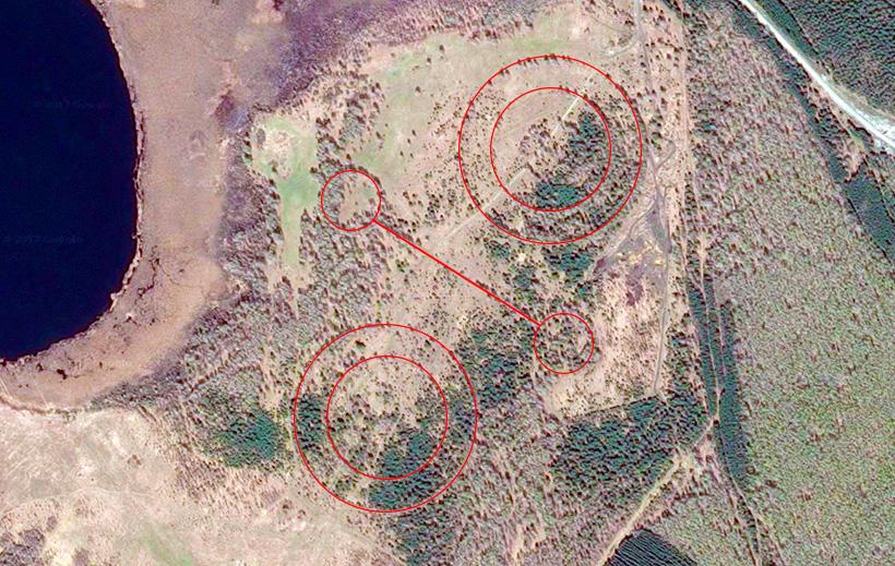 Найдены таинственные круги из деревьев под Каслями