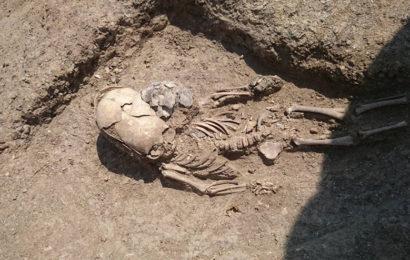 В Крыму нашли захоронение ребенка с удлинённым черепом