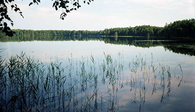 Малое Плотово озеро
