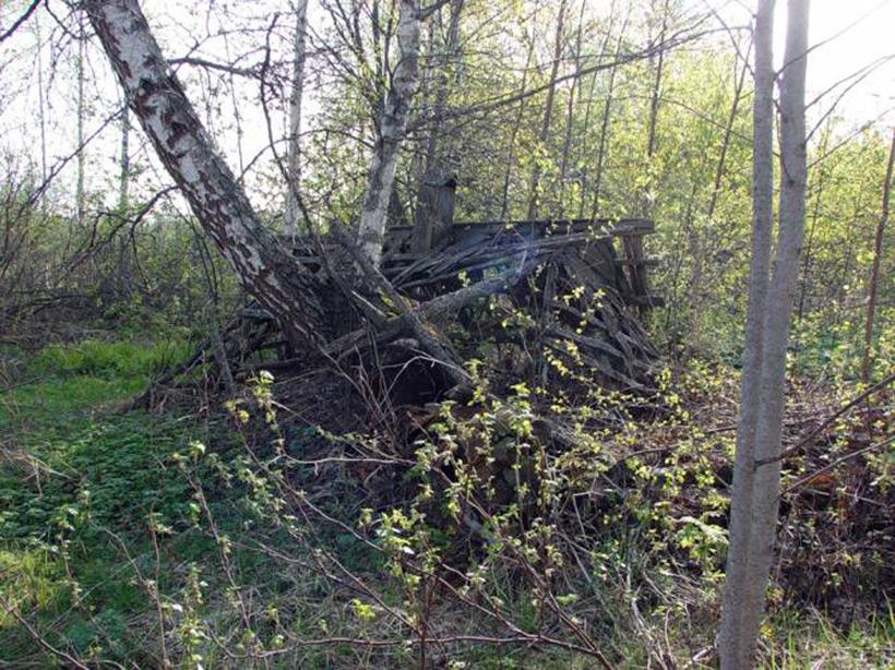 Локнянская поляна и проклятая деревенька в Псковской области