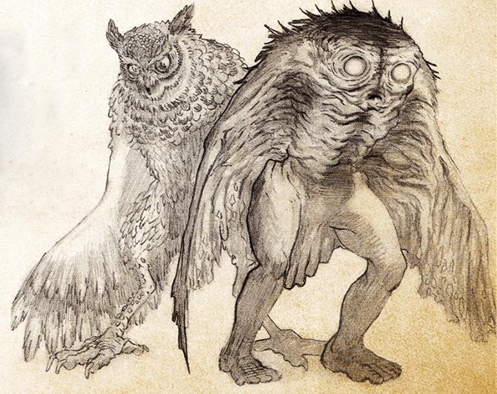Человек-мотылек и человек-сова