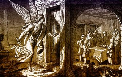 Ангел смерти, убивший 31 человека