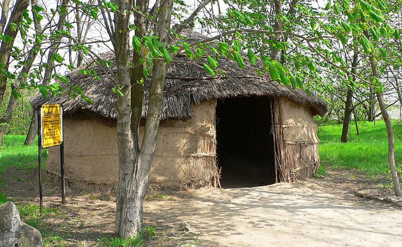Меотское жилище