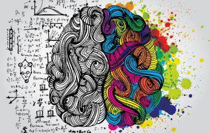 А мозги-то разные