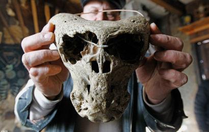 Чемоданчик «Аненербе» с черепами неизвестных существ нашли в Адыгее