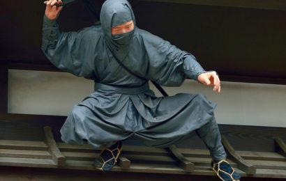 Тайны ниндзя (часть 2)