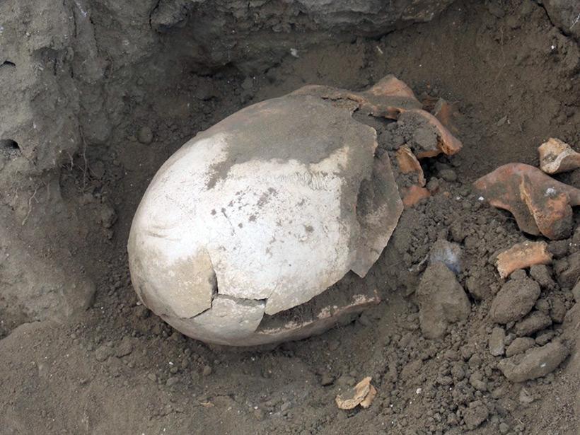 На «Кладбище нартов» найдены захоронения длинноголовых людей