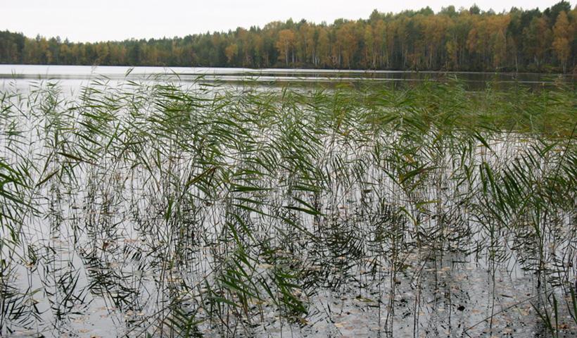 Дьявольское озеро