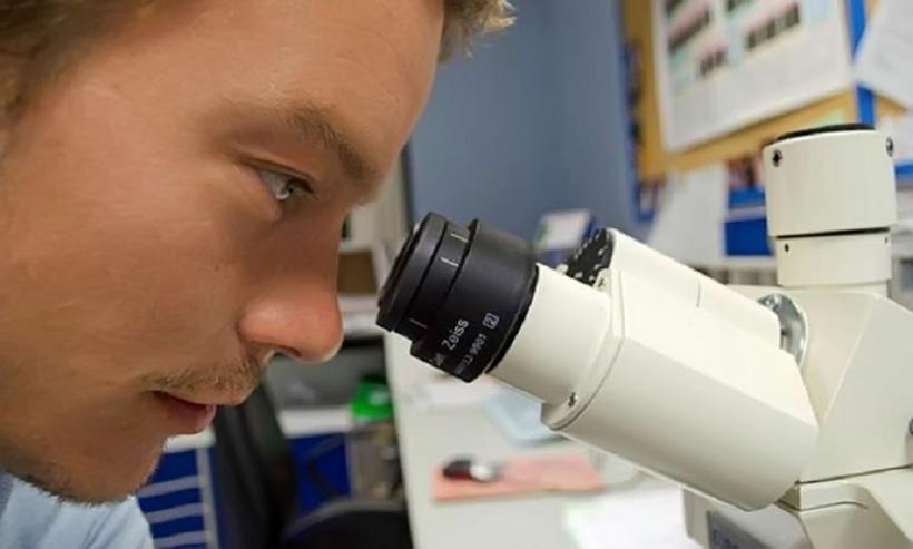 Живой микроскоп