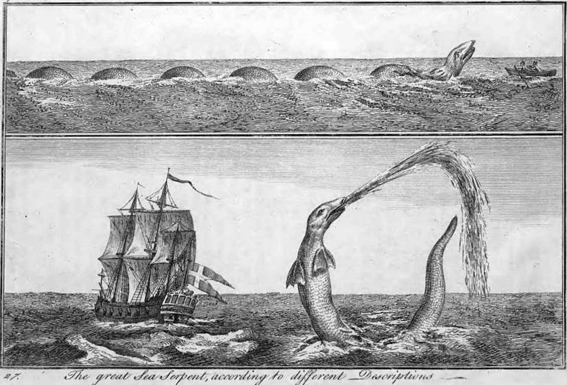 Черноморский змей