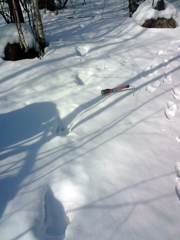Свидетельство странных следов на снегу в Кировской области
