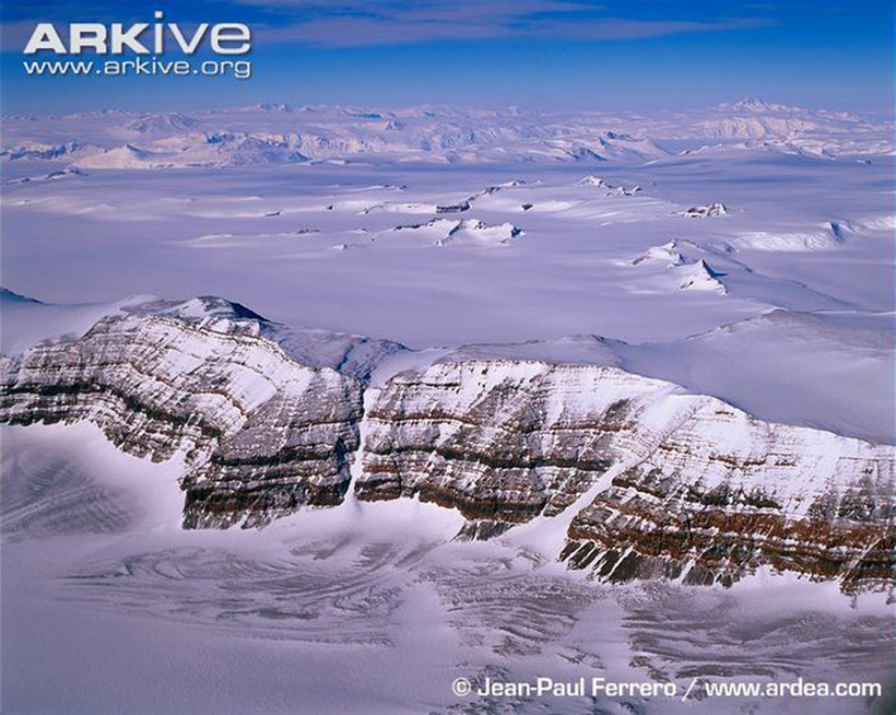 Антарктида. Transantarctic Mountains