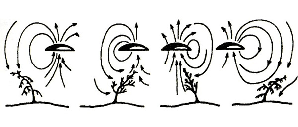 Характер гравитационного воздействия движущегося НЛО на деревья