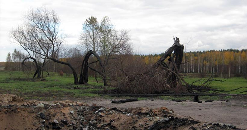 Чёртов овраг в Псковской области