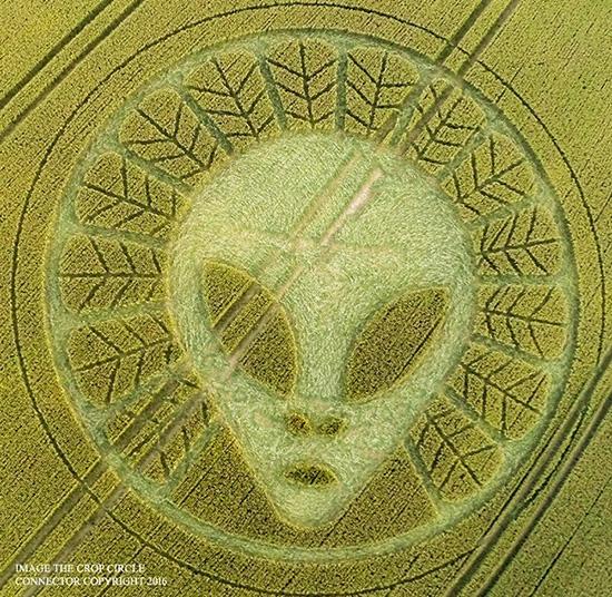 Знакомьтесь: гуманоиды. Расшифровка космических знаков (часть 6)